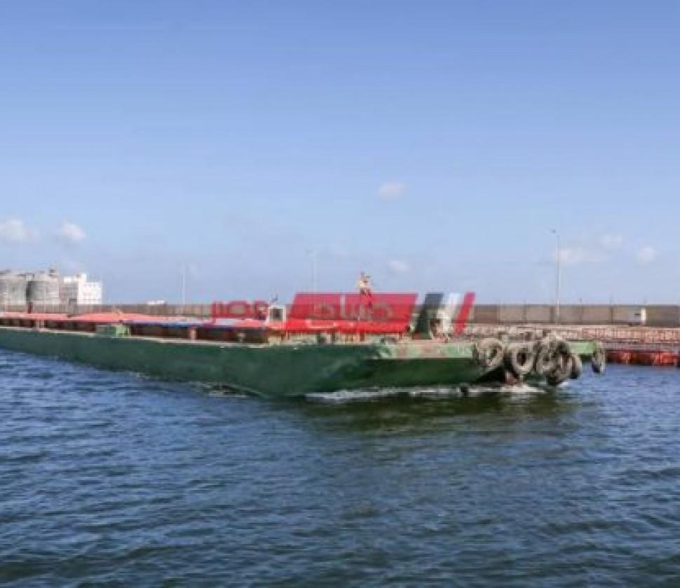 """وصول 4468 راس ماشية """"عجول تسمين"""" إلى ميناء دمياط"""