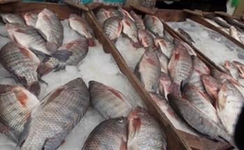 ننشر أسعار الأسماك بالمجمعات الاستهلاكية بجميع المحافظات