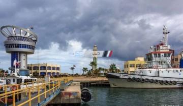 ميناء دمياط يستقبل 11 سفينه و 76 سيارة تغادر نقل محملة بـ 3766 طن قمح