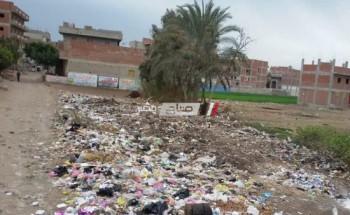 رئيس محلية دمنهور: اتابع شن حملات النظافة اليومية بأبو الريش قبلى 2