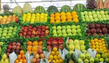 25 جنيهًا متوسط سعر البطيخ في الأسواق