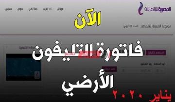 حالا رابط الحصول على فاتورة التليفون الأرضي يناير 2021 المصرية للاتصالات