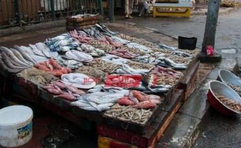 أسعار الأسماك اليوم الجمعة 7-5-2021 في أسواق مصر