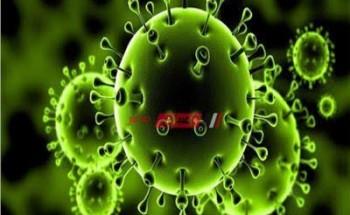 المغرب تسجل 71 إصابة جديدة بفيروس كورونا ليرتفع العدد إلى 534 حالة