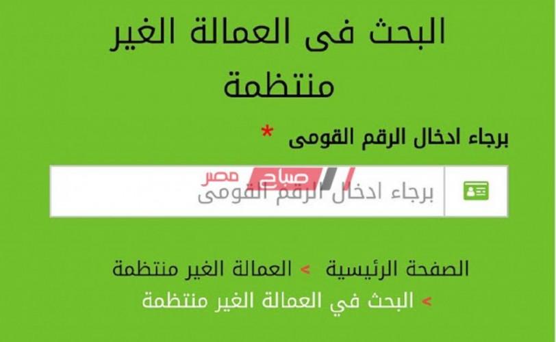رابط موقع القوى العاملة ومعلومات هامة عن تسجيل بيانات العمالة الغير منتظمة وصرف 500 جنيه شهريا Manpower Gov صباح مصر