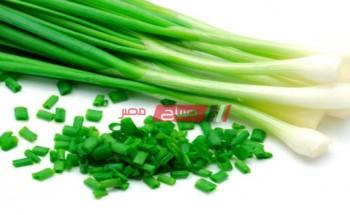 تعرفي علي أهم مميزات وفوائد البصل الأخضر