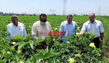 وكيل وزارة الزراعة بدمياط يتابع اعمال نظم الري للحديث