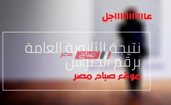 بالشرح التفصيلي من خلال الفيديو كيف تحصل على نتيجه الثانويه العامه في منتهى السهولة-موقع  صباح مصر.