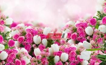 تفسير حلم رؤية الورود في المنام