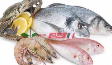 تفسير رؤية حلم السمك في المنام بالتفصيل