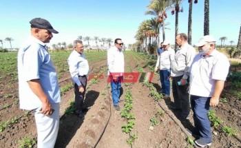 وكيل زراعة دمياط يشدد على ضرورة تكثيف المرور الميداني والتواصل الدائم مع المزارعين