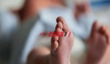 مصرع طفل حديث الولادة نهشته الكلاب بمحافظة الإسكندرية