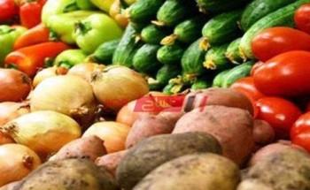 الوادي الجديد تشهد زراعة 207 ألف فدان خضار ومحاصيل شتوية