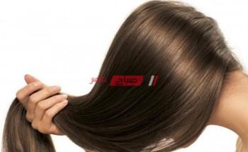 تعرفى على كيفية معالجة شعرك من التلف والتقصف