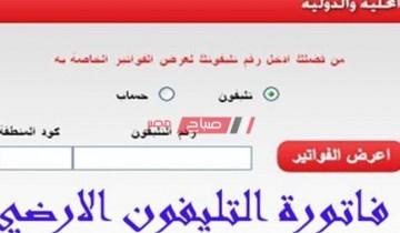 لينك استعلام فاتورة التليفون الأرضي فبراير 2021 موقع المصرية للاتصالات