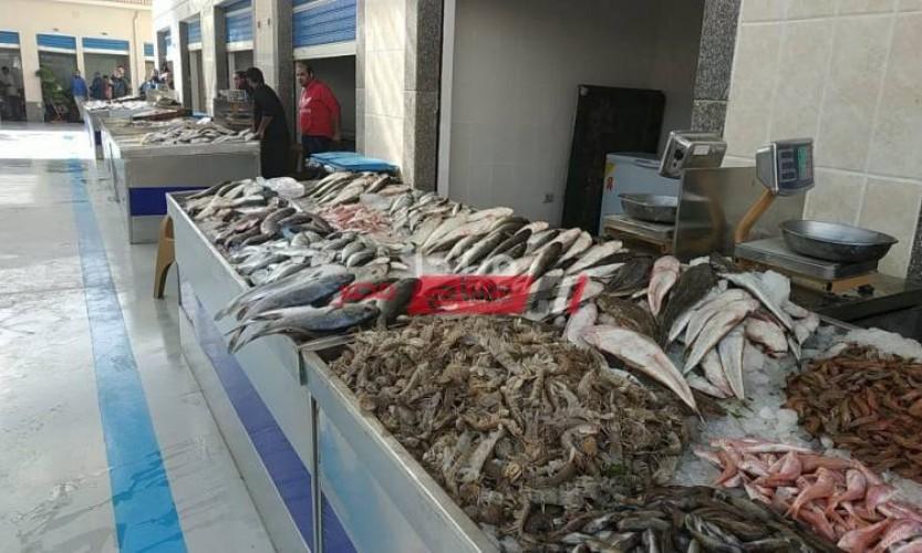 فتح سوق جديد للسمك في بور سعيد وإقبال جماهيري شديد