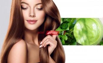 تعرفى على فوائد الجرجير لعلاج تساقط الشعر