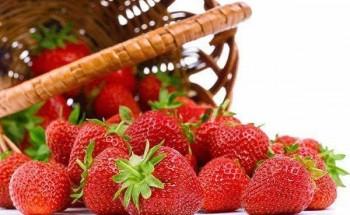 تعرفي معنا من مطبخ صباح مصر علي أهمية الفراولة وفوائدها للجسم