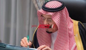 تعرف علي تفاصيل قرار تجديد رخصة العمل كل 3 أشهر بدلاً من عام في المملكة العربية السعودية