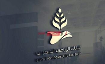 رابط تقديم وظائف البنك الزراعي المصري 2021 والشروط المطلوبة