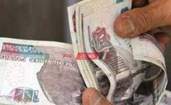 """شهادة أم المصريين من البنك الاهلى المصرى"""" الحد الأدنى والأقصى"""" للشراء"""