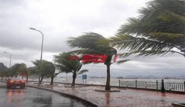 نوة الغطاس 2021 تضرب الإسكندرية بأمطار غزيرة ورياح شديدة