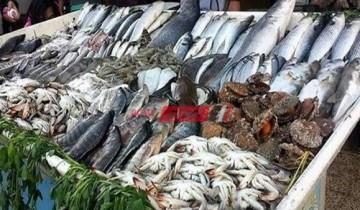 أسعار السمك اليوم الجمعة 23-7-2021 في السوق المصري