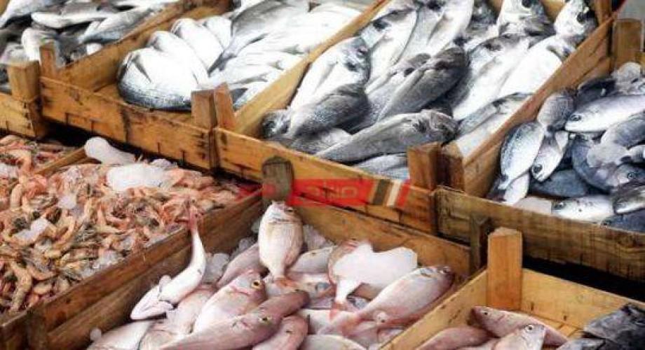 أسعار السمك اليوم الخميس 22-7-2021 في الأسواق المحلي