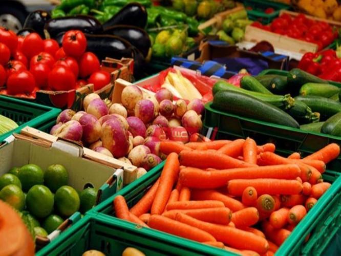 أسعار الخضروات اليوم السبت 24-7-2021 داخل أسواق مصر
