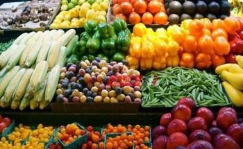 أسعار الخضروات اليوم الأربعاء 24-2-2021 في السوق المصري واستقرار كبير