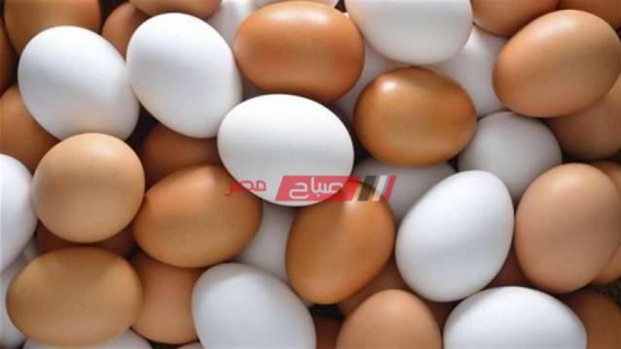 أسعار البيض اليوم الإثنين 13-9-2021 في أسواق محافظات مصر
