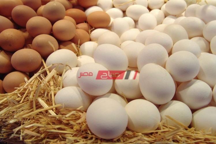 أسعار البيض لكل الأنواع اليوم الخميس 8-4-2021 في مصر