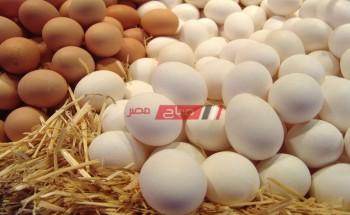 أسعار كرتونة البيض اليوم الجمعة 7-5-2021 في أسواق مصر