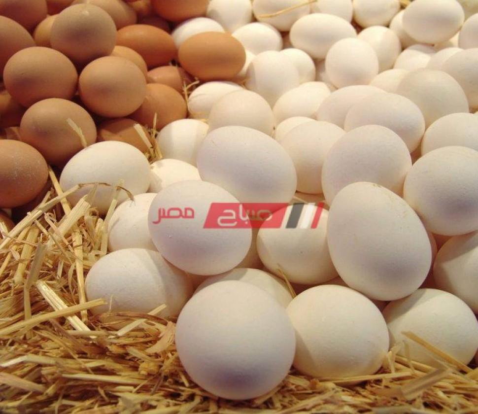 أسعار كرتونة البيض في السوق المصري اليوم الثلاثاء 26-10-2021