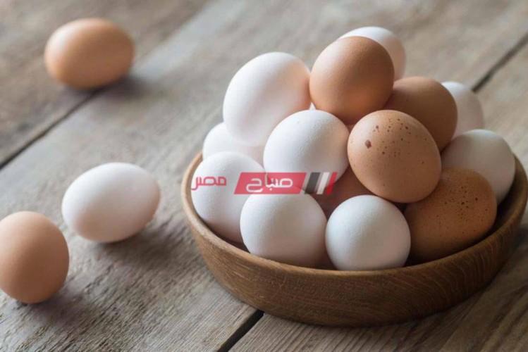 أسعار كرتونة البيض الأربعاء 15 من سبتمبر