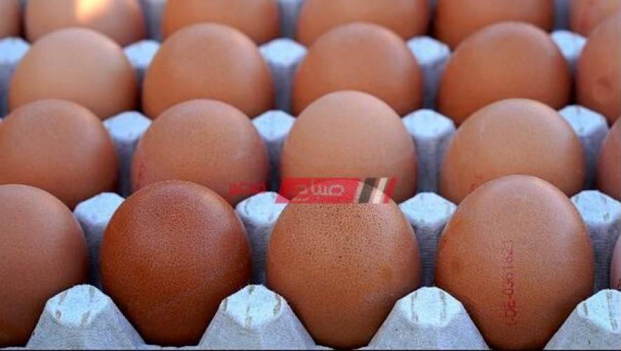 أسعار البيض اليوم الأربعاء 23-6-2021 في أسواق مصر