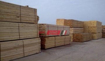 أسعار كل انواع الخشب النهاردة الإثنين في اسواق محافظات مصر