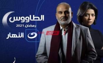 موعد عرض مسلسل الطاووس الحلقة الخامسة مسلسلات رمضان 2021 والقنوات الناقلة