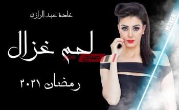 موعد عرض الحلقة السابعة والعشرون من مسلسل لحم غزال 27 بطولة غادة عبد الرازق