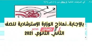 امتحانات استرشادية للصف الثاني الثانوي موقع وزارة التربية والتعليم نماذج متعددة التخصصات تانية ثانوي