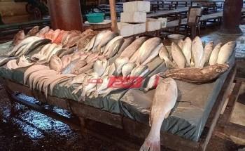 تحديث أسعار الأسماك اليوم الأحد 30-5-2021 في الإسكندرية