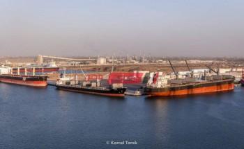 ميناء دمياط يعلن وصول 1607 طن خشب زان و 4100 طن ابلاكاش