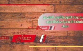 رسميا درجات القبول بالثانوي العام من الشهادة الاعدادية محافظة جنوب سيناء