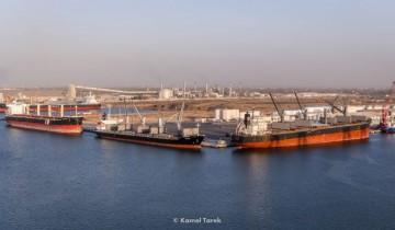 ميناء دمياط يعلن تصدير 1499 حاوية مكافئة من الحاصلات زراعية
