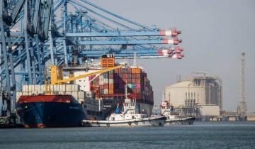 ميناء دمياط يعلن وصول 2350 طن خشب زان مع تداول 23 سفينة