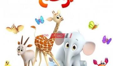 التردد الجديد لقناة براعم Baraem TV للأطفال عبر النايل سات لمتابعة أجدد البرامج الحصرية