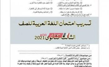 تسريب امتحان اللغة العربية للصف الثالث الثانوي 2021 .. تعرف على حقيقة الأمر
