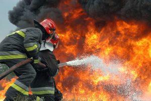 اخماد حريق بحظيرة مواشى بدسوق في كفر الشيخ