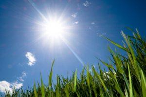 انخفاض الحرارة غداً الجمعة 28 يونيو 3 درجات بجميع الأنحاء