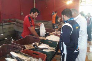 اسعار الاسماك فى بورسعيد  هذا الاسبوع